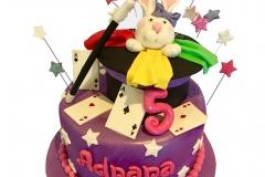 Magician cake