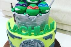 Ninja Turtles 2 Tiers Cake